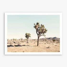 Joshua Tree Art Print
