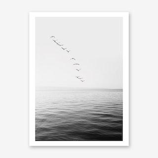 Birds And Ocean Art Print