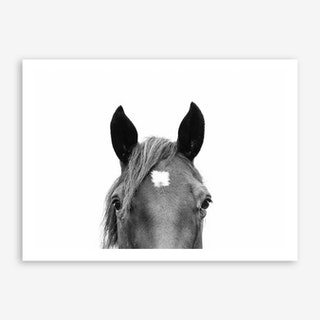 Peeking Horse Art Print