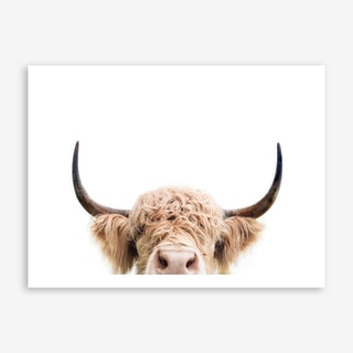 Peeking Cow Art Print
