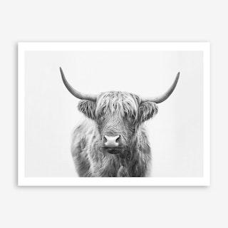 Highland Bull Art Print