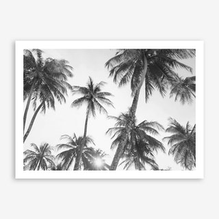 Palm Trees- Black and White Art Print