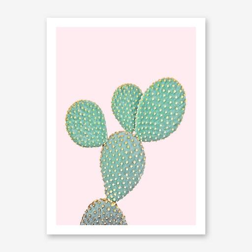 Cactus On Pink II