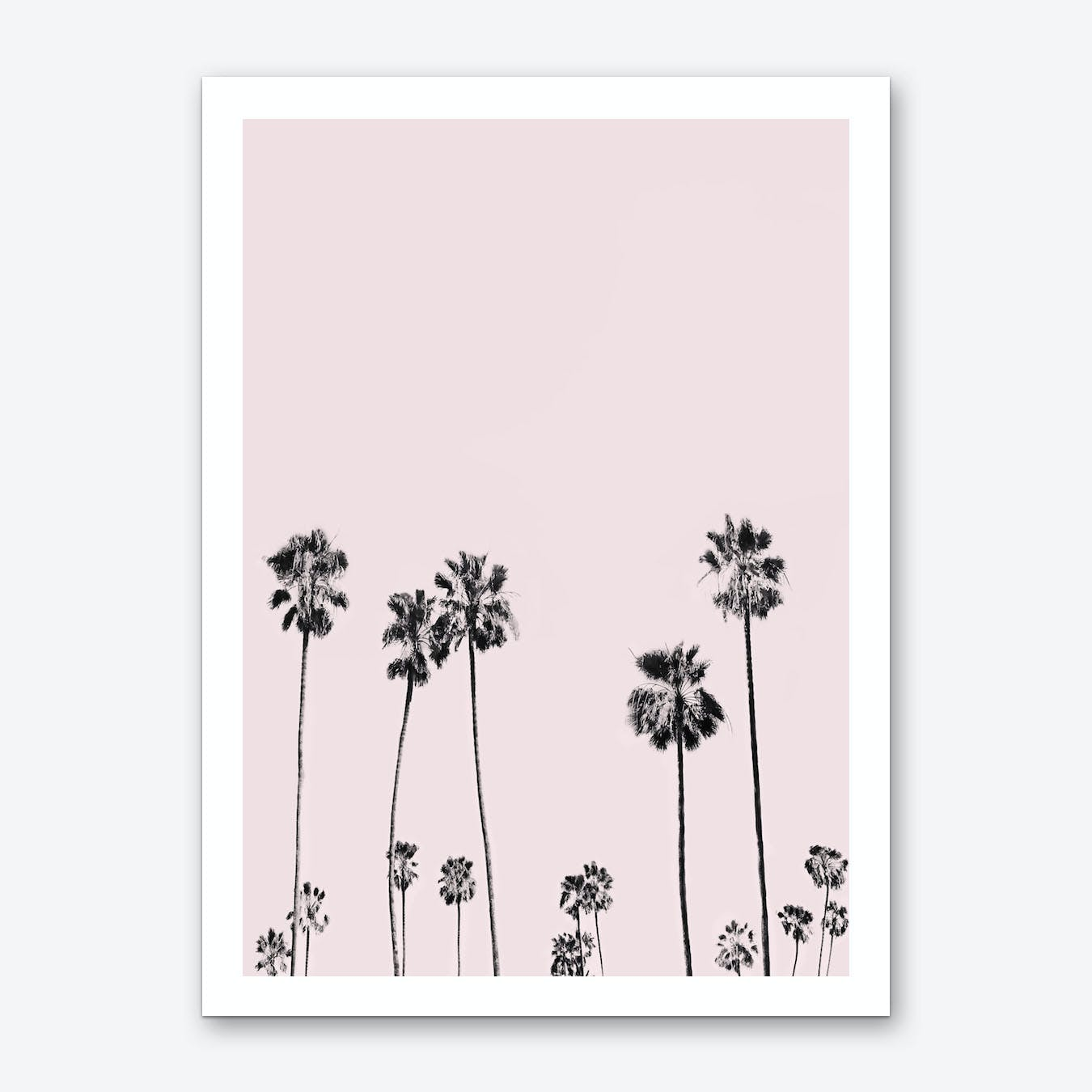 Palm Valley Blush Art Print
