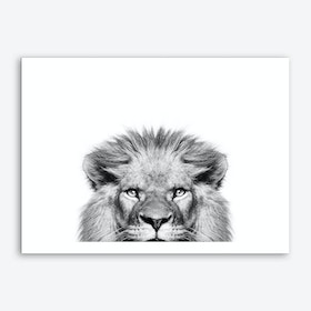 Peeking Lion Art Print