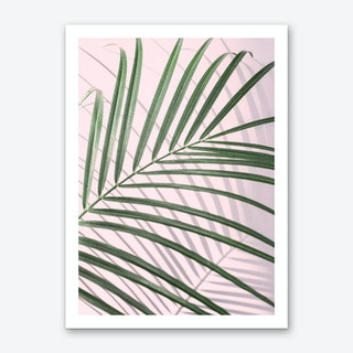 Pink & Palm Leaf Art Print
