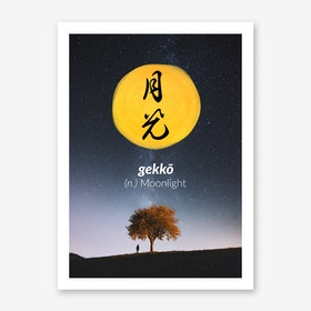 Gekko Art Print