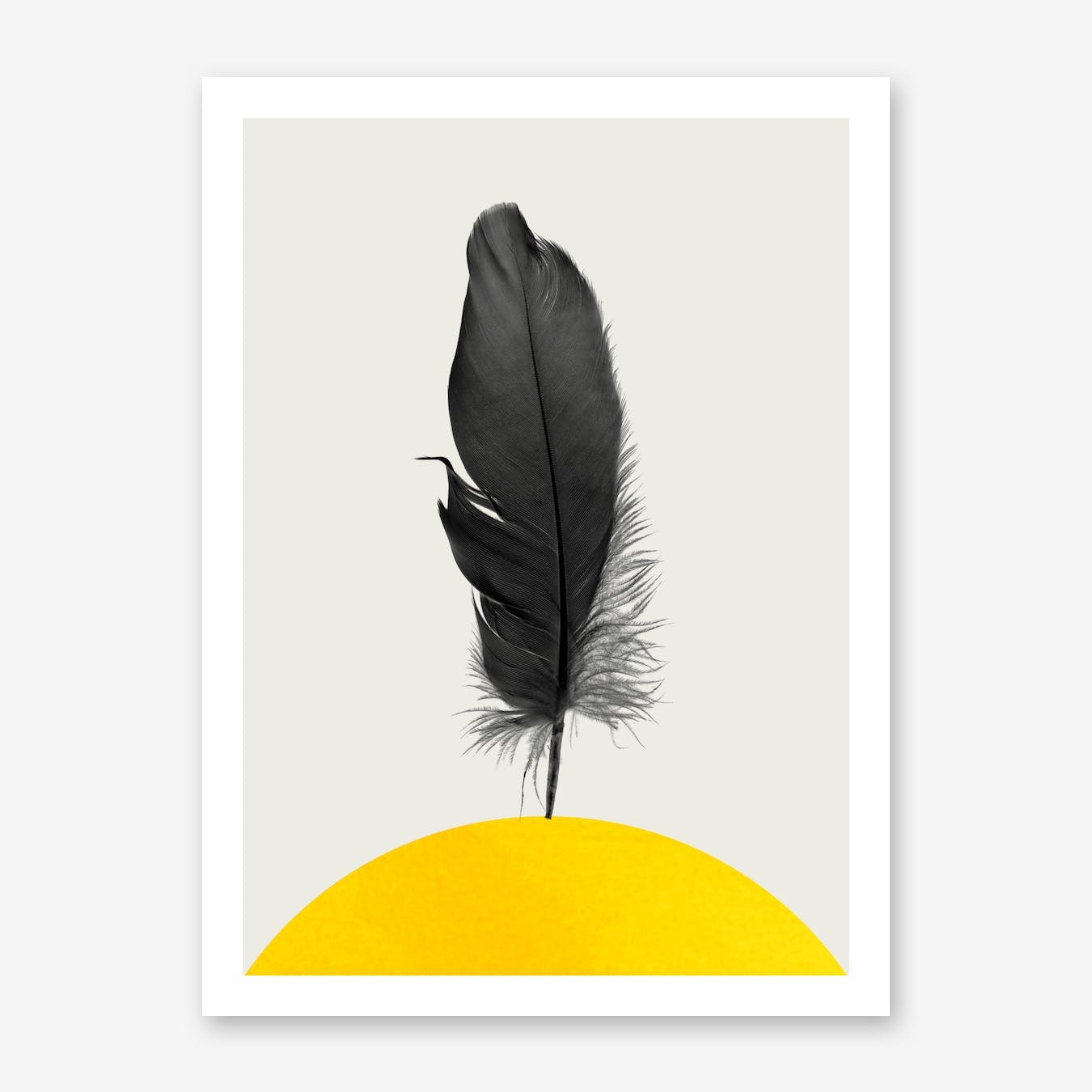 Dancing Feather