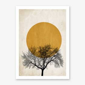 Winter Morning Art Print