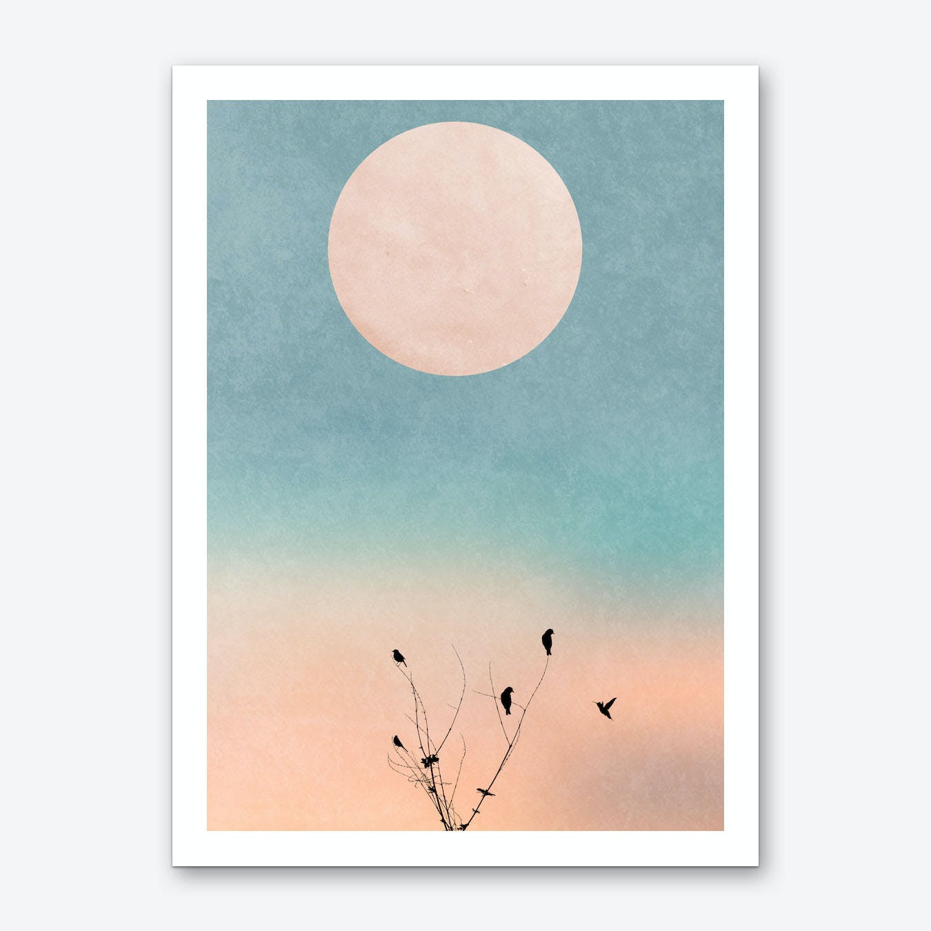 Waking Up Warm Art Print