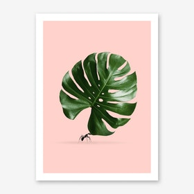 Monstera Ant Art Print