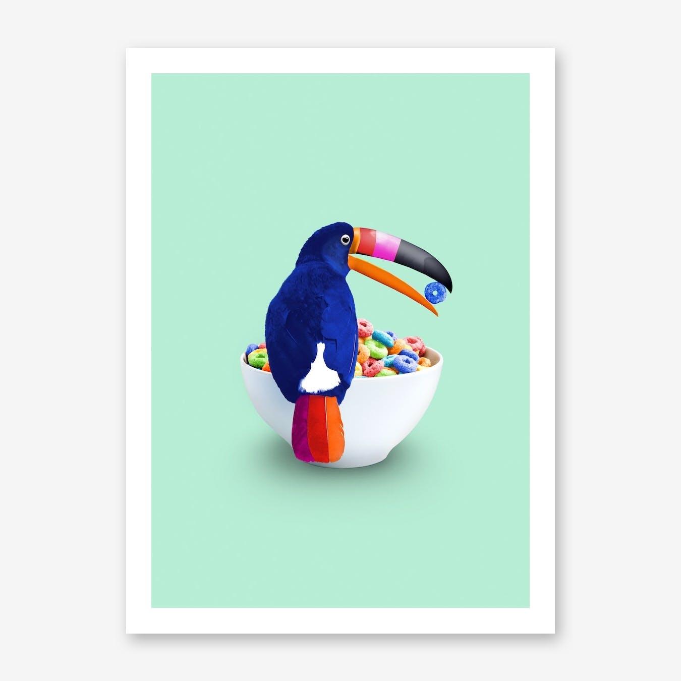 Loop Toucan