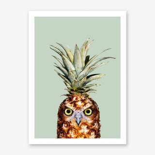 Pineapple Owl Art Print