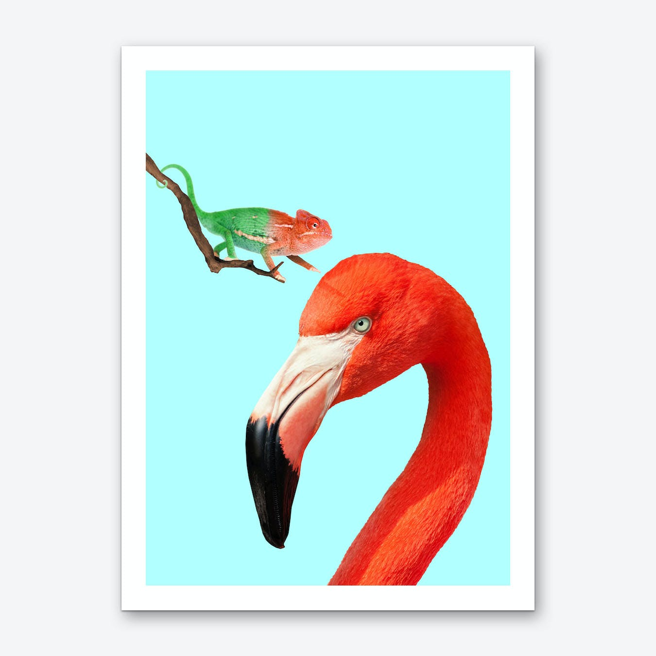 Colorful Friends Art Print