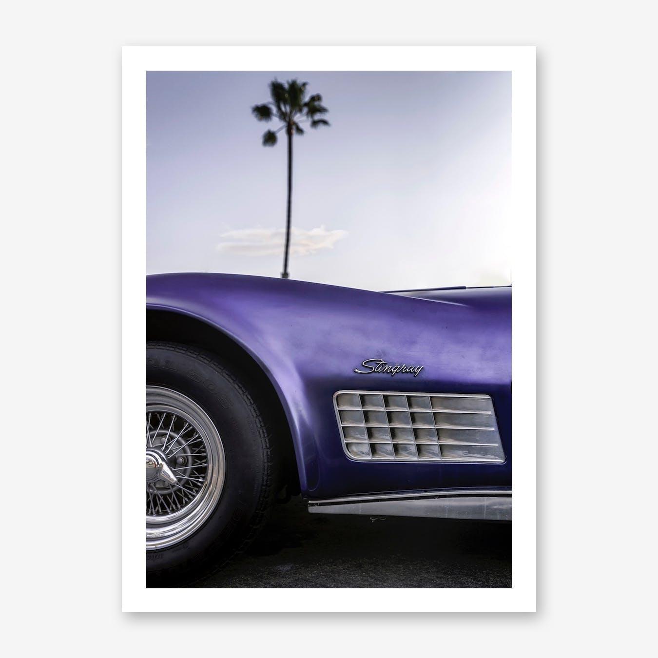 Cali Purple