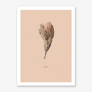 Botanico I Art Print