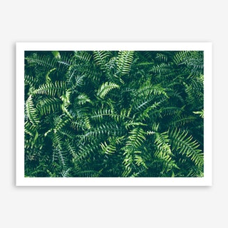 Leaves I Art Print