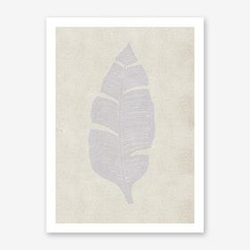 Palma Dove Grey