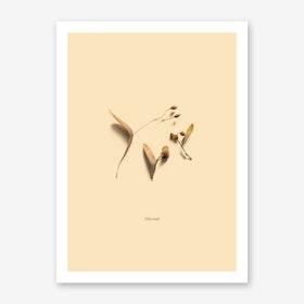 Botanico VI Art Print