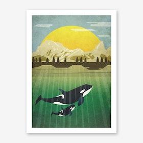 Illu Orca Art Print