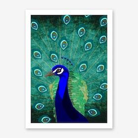 Illu Peacock Art Print