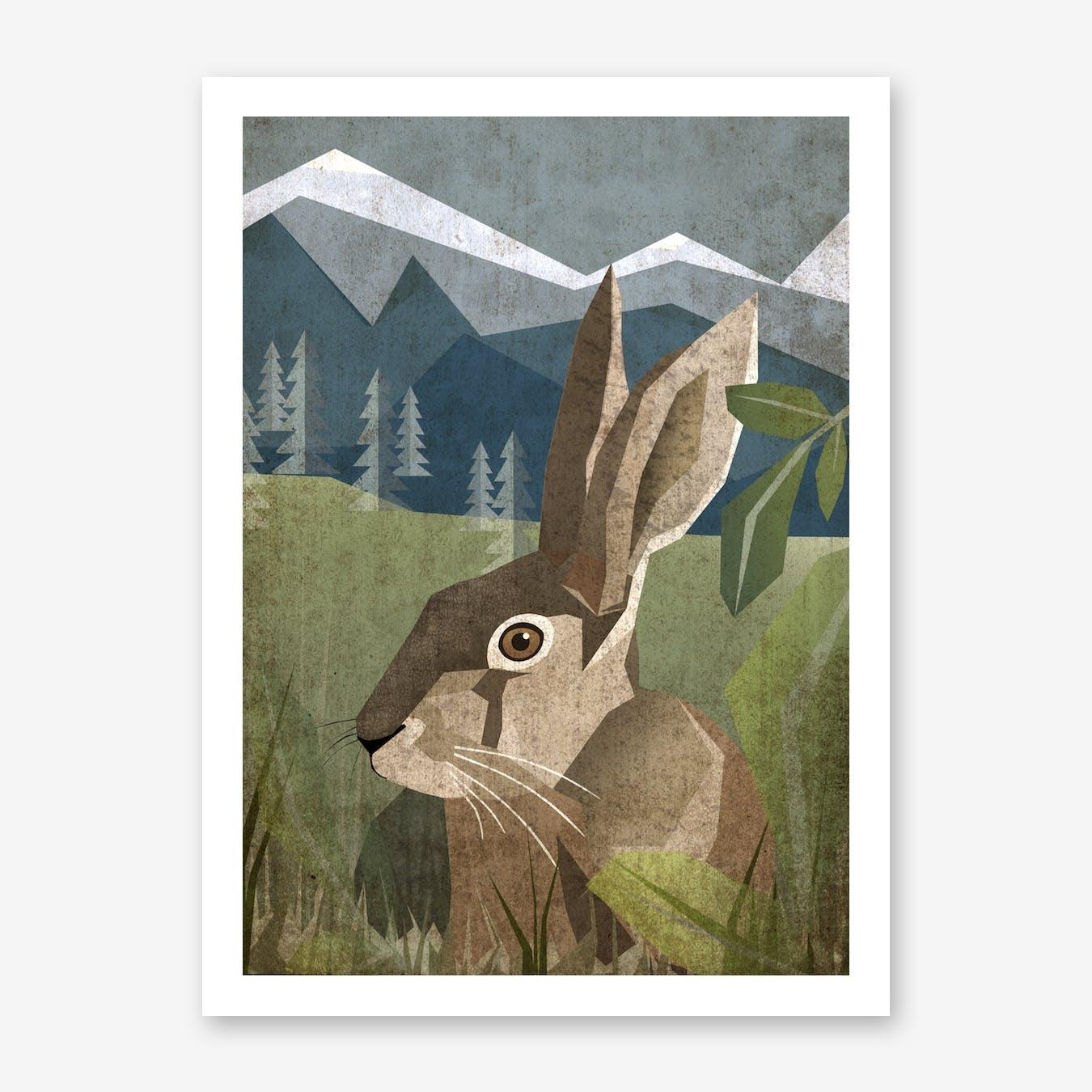 Illu Rabbit