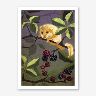 Illu Hazel Art Print