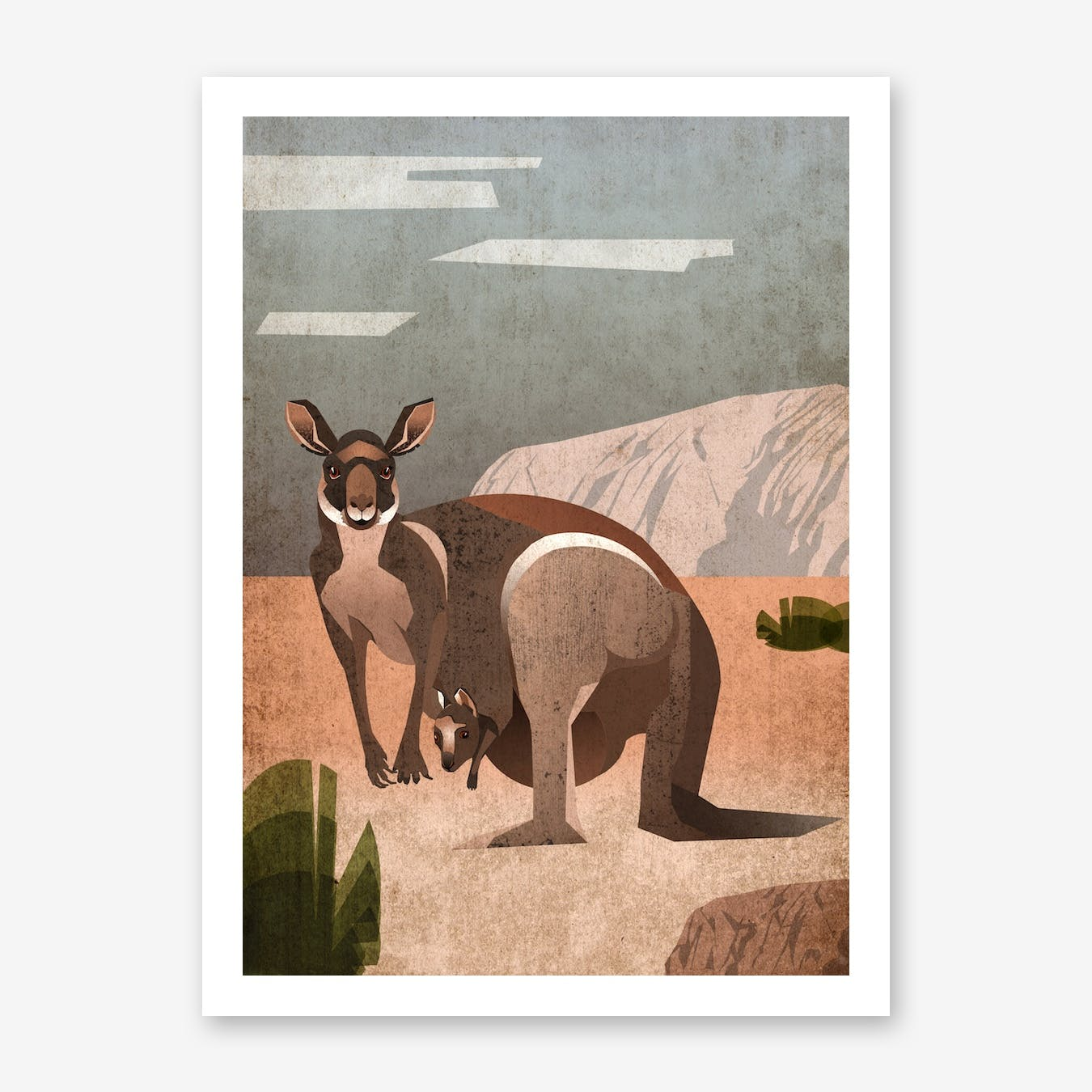 Illu Kangaroo