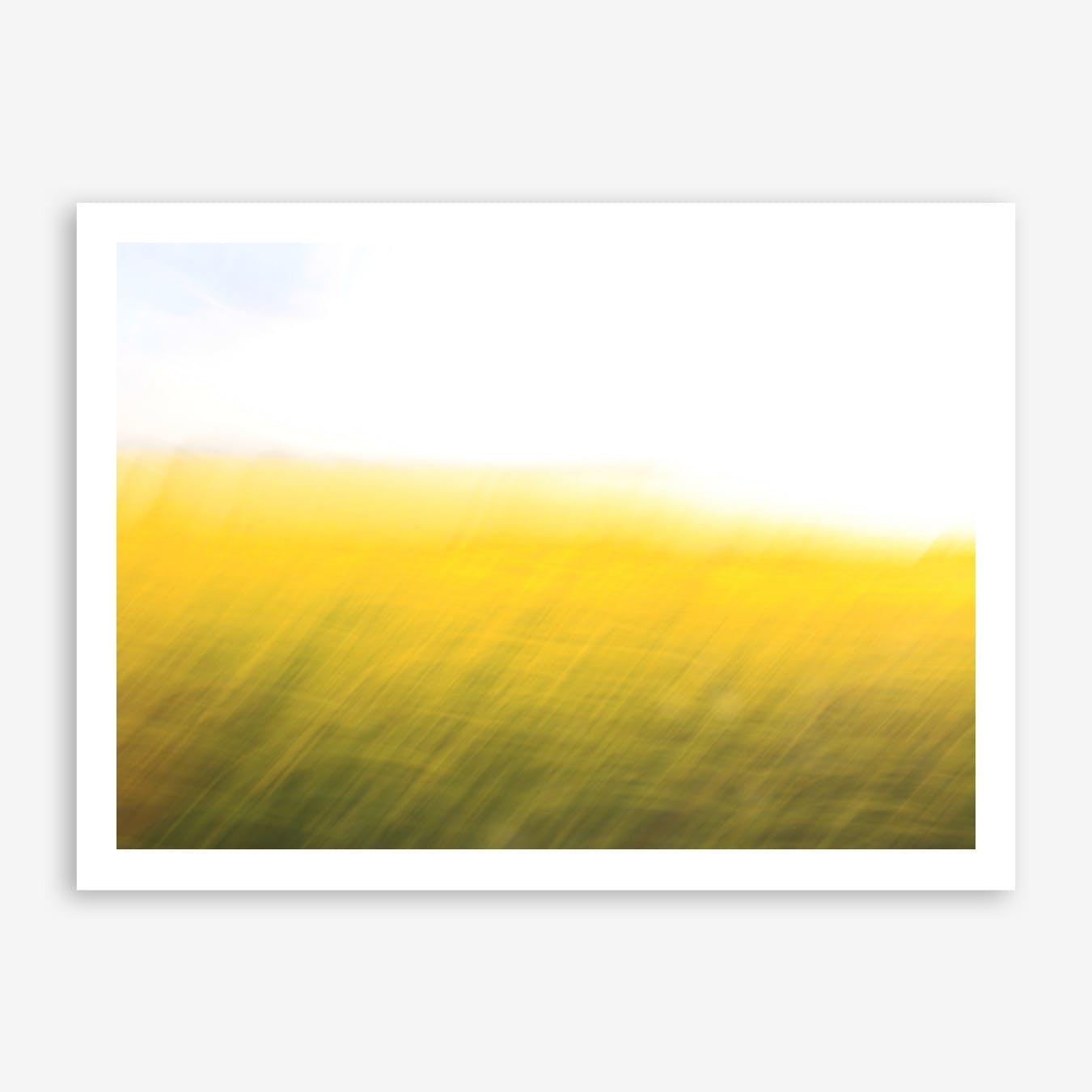 Fields of Gold 06