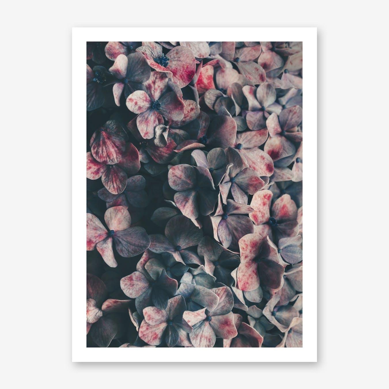 Flowers - Moody Blues