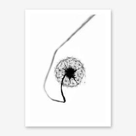 Dandelion - Simplicity Art Print