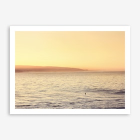 Lonley Dog Surfing II x Morocco Sunrise