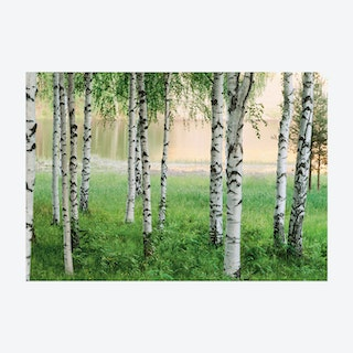 Scandi Woods Wall Mural
