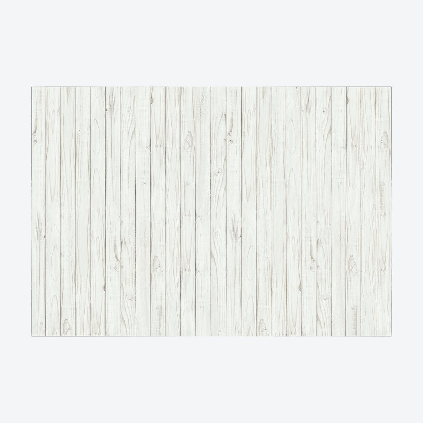 Birch Wood Wall Mural