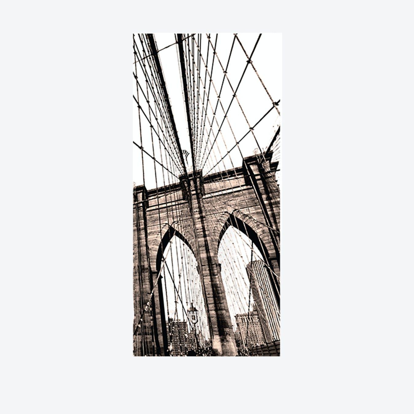 Brooklyn Bridge Door Mural