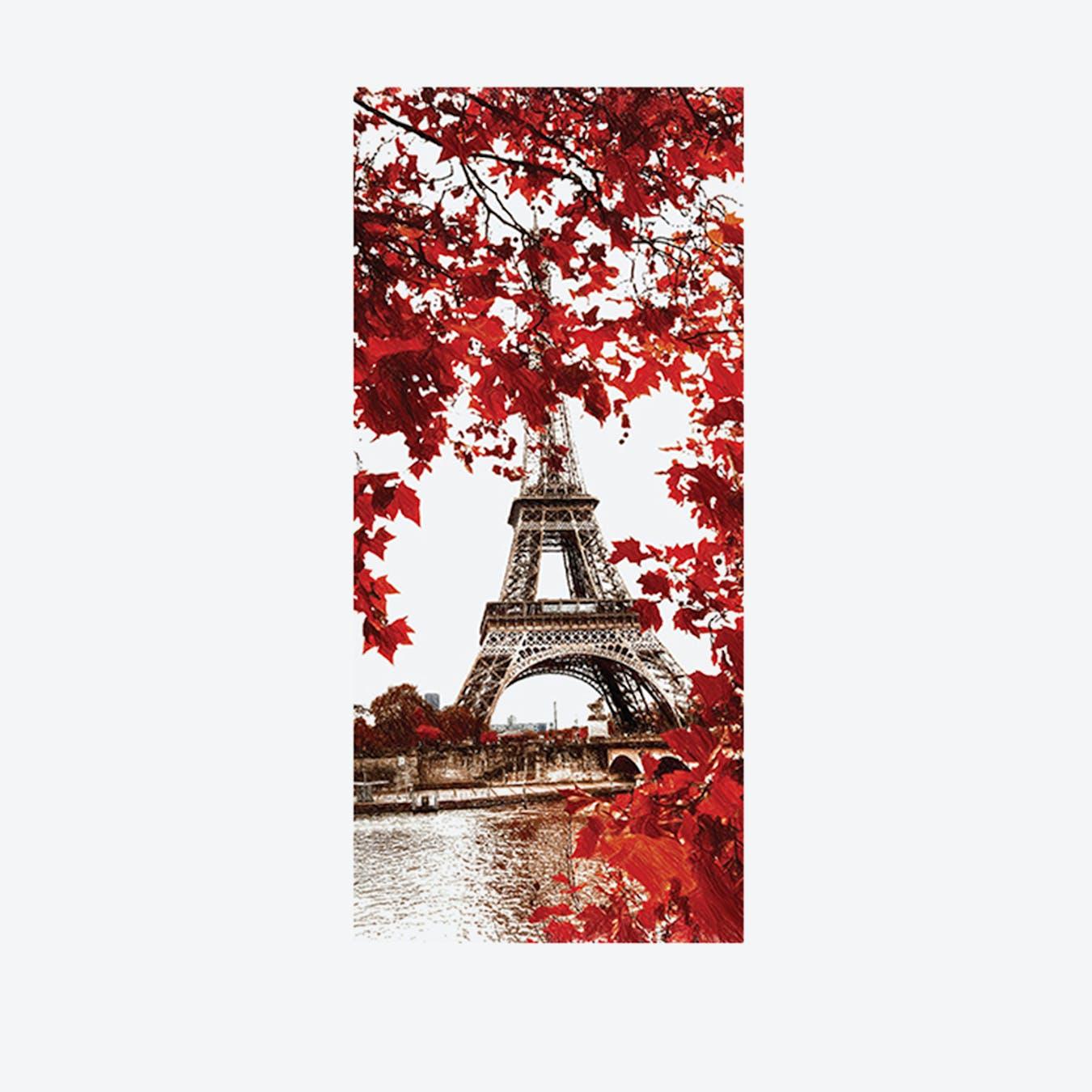 Eiffel Tower Vinyl Door Mural