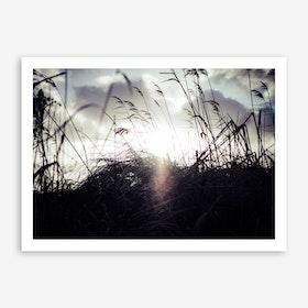 Reeds on the Beach 3 Art Print