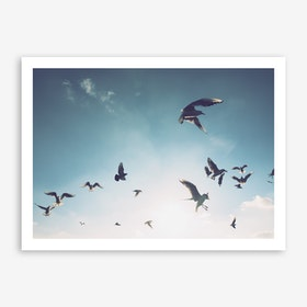 Seagulls at Hamburg Harbour 2 Art Print