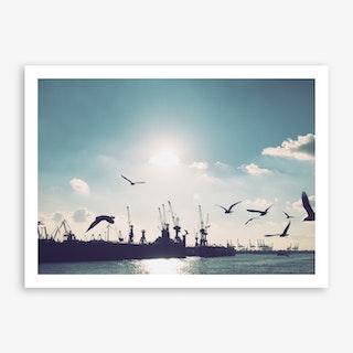 Seagulls at Hamburg Harbour 3 Art Print