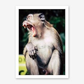 Kuala Lumpur Batu Caves Ape 3 Art Print