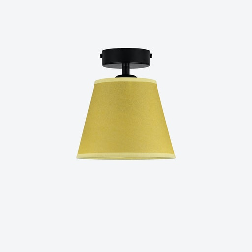 Iro 1 Ceiling Lamp in Lime Green