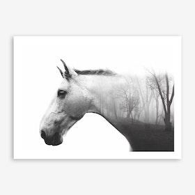 Forest Horse Art Print