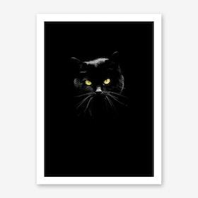 Puddy Cat