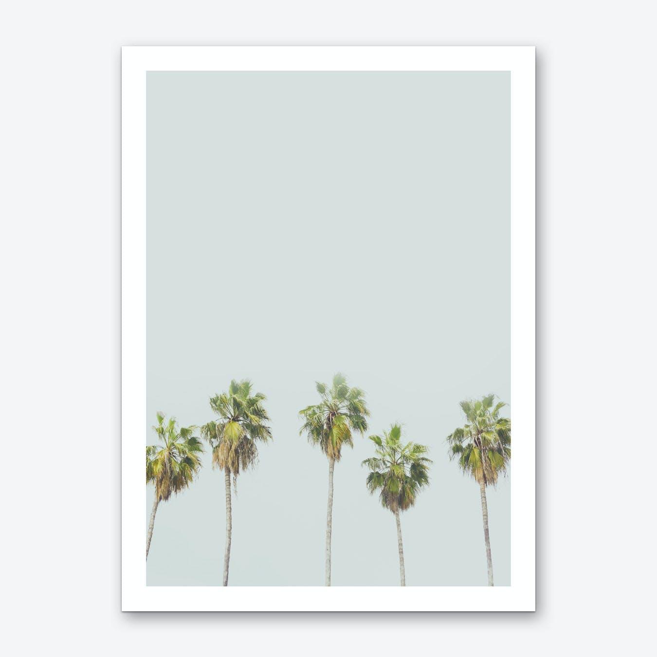 Palm Trees Print 2