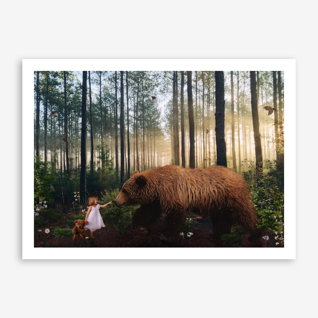 Winnie in the Woods