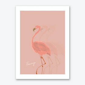 Flamingo Shadow Art Print