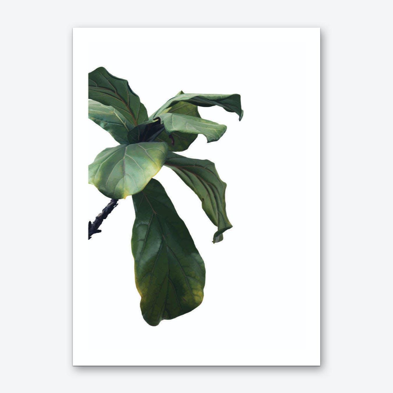 Green Plant Head Art Print