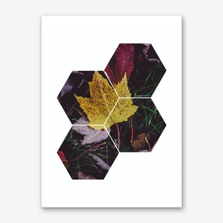 Leaf and Grass Hexagon Abstract Art Print