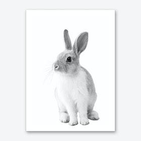 Monochrome Bunny Art Print