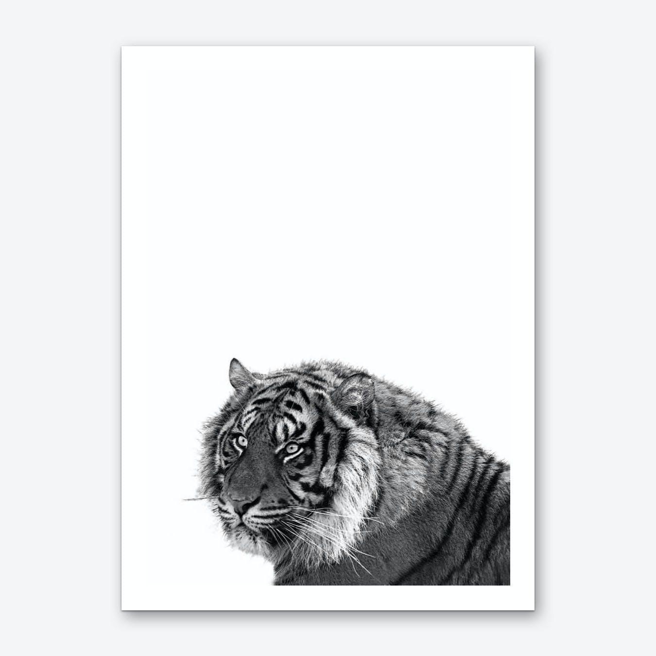 Monochrome Tiger Art Print